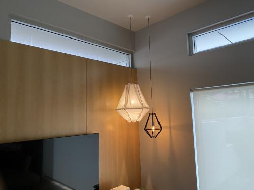 Pendants Light Fixtures