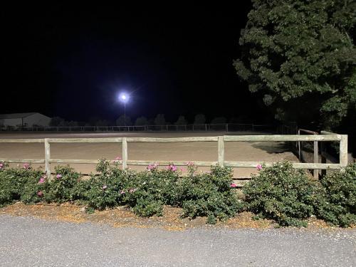 Paddock Lighting Adelaide